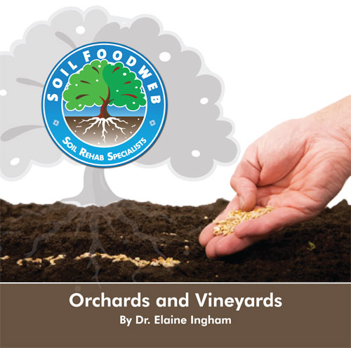 Orchards and Vineyards audio CD